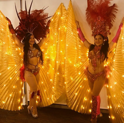 Samba Dancer Duo