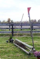 T Pole Coop tStarter