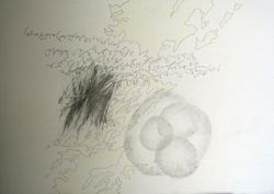 Drawing 49 Eleanor MacFarlane