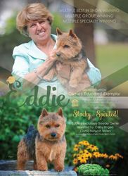 Dog News Ad Oct 2015