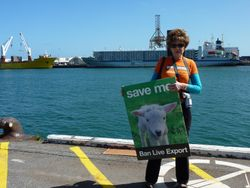 Protest against the Live Export Trade