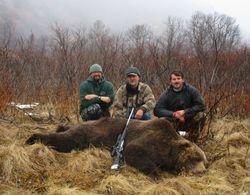 Larry Lescanec's Kodiak Bear