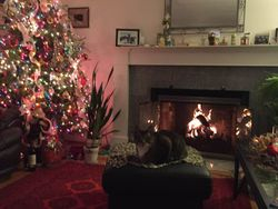 At Home on Christmas, Branford, 2018.
