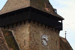 Gaten in het torendak