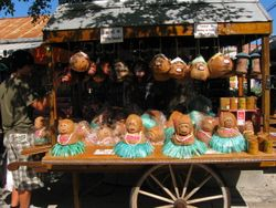 Hula girls made from coconuts!!