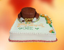 Occasion Cakes 26