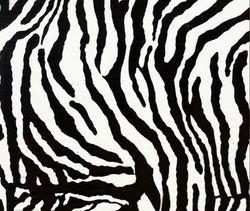 WTP 519 Zebra Small
