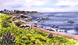Shoreline Path, Pacific Grove