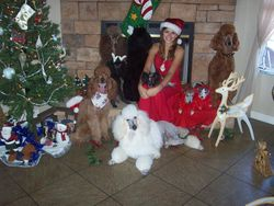 My Daughter Jazare & A Few of our Dogs - 2008