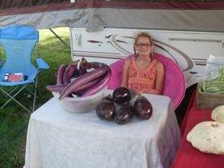 Slim Purple & Black Beauty Eggplant