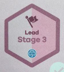 Lead Stage 3 Skill Builder
