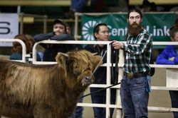 March Jr. Heifer Calf class