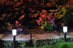 Lindys flower garden nights 3