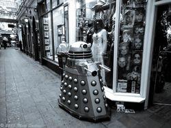Dalek Window Shopping