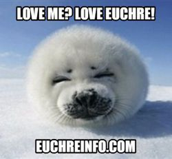 Love me? Love Euchre!