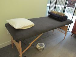 Healing/Massage Table