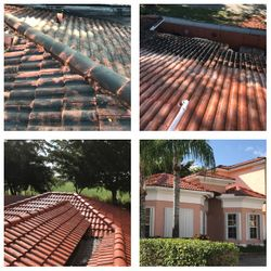 Roof chemical cleaning