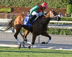 Belvoir Bay wins the Unzip Me Stakes