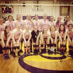 Pink Volleyball Jerseys for Fountain Lake Cobras