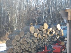 Serious wood for heating