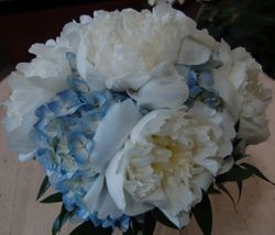 White Peony and Blue Hydrangea Bridal Bouquet