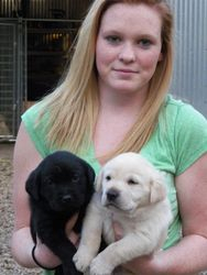 Brooke and Pups