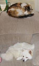 VICKY & ROSANNA NAP  TIME :) 2011