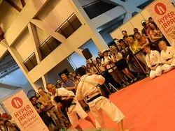 Martial arts stage - Shorinji Kempo