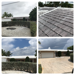 White Roof Pressure Cleaning
