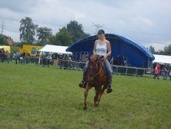 Demo Geelse paardenkijkdag