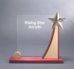 Elegant Acrylic Awards