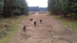 Enjoying last group walk