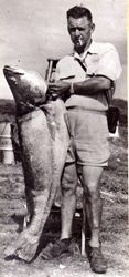 Ollie Svensen  and jewfish caught in 1950s