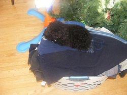 ahhh warm laundry