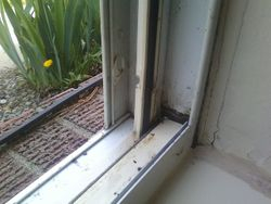 window seal- after