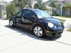 Sharon -------Volkswagen beetle