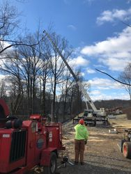 Tree Guys working for commercial client in Glen Mills, PA
