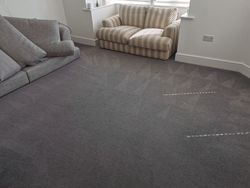 Carpet & Upholstery Clean