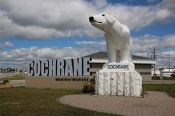 Polar bear statue in Cochrane