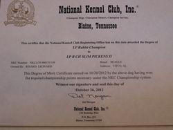 Slim's Champion Certificate