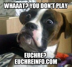 Whaaat? You don't play Euchre?