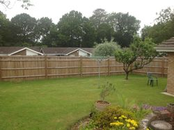 Lanscaped garden and close board fencing