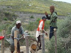 Wood Sellers, South Africa