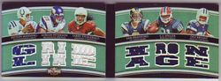 2010 Triple Threads Peyton Manning / Sam Bradford / Adrian Peterson / Larry Fitzgerald / Dez Bryant / C.J. Spiller 15 piece Game Jersey Booklet Serial #08/15