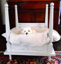 Caillou in his four poster bed