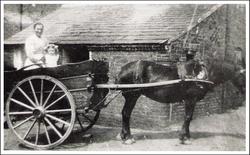Halesowen. 1900