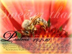 Psalms 19:7-10
