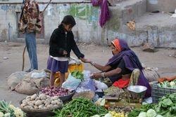 Pushkar, India 22