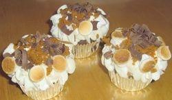 Fun Smore's Cupcakes