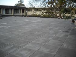 UBC Roof top patio